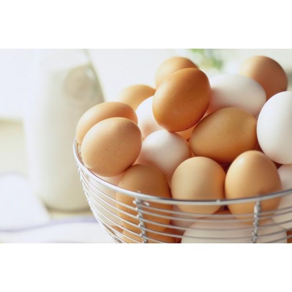 Яйца куриные 10шт